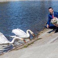 Свадьба :: Евгений Казаков