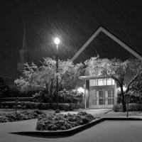 Снегопад :: Victoria Ditkovsky