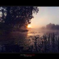 Расвет на реке Сестра. :: Дмитрий Постников