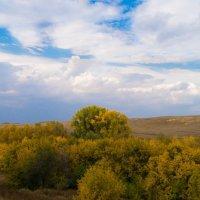 Поселок Советское, Саратовская область :: Нурлан Султанов