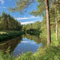 Вологодские пейзажи :: Борис Устюжанин