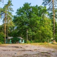 Домик в лесу :: Юрий Стародубцев