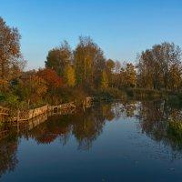 Осенняя палитра :: vladimir