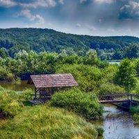 Карпаты :: ALLA Melnik