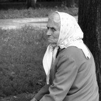 ...торговля и думы... :: Ольга Нарышкова