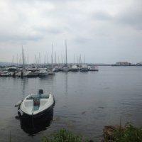 На море... :: Светлана Ященко