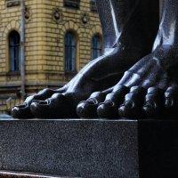 Ноги....)))))))) :: Jeller J.