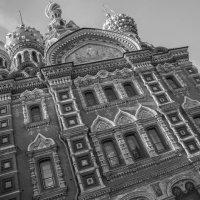 Прогулки по Питеру :: Sergey Polovnikov