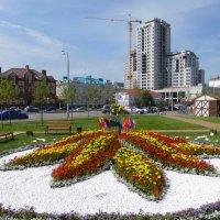 Цветочный фестиваль 2015 в Казани :: Наиля