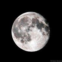 Луна :: Богдан Петренко