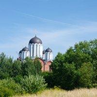 Церковь в честь иконы Божией Матери «Всех Скорбящих Радость» :: Игорь Пракофьев