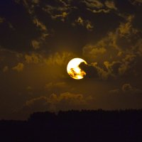 Ночное небо :: cfysx