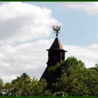 Таврический сад, вдали музей Суворова :: Вера