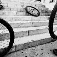 Четыре колеса :: Лиля Ахвердян