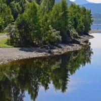 На правом берегу Майнского водохранилища :: galina tihonova