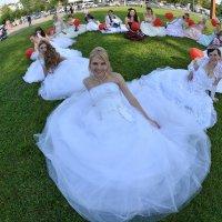 Парад невест. Фото на память. :: Борис Гуревич