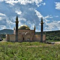 Новая мечеть :: Виктор Прохоренко