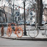 Вело-забор :: Ольга сташевски
