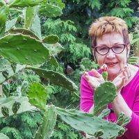 Цветущий кактус. :: Надежда Ивашкина