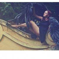крылья :: Ольга Степанова
