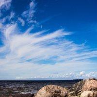Финский залив :: Юля Тихонова