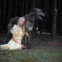 """А теперь.. сказка про.. """"...собаку, еще собаку, рыцаря, и кое-кого еще красивого в лесу...&quot :: Igor Veter"""