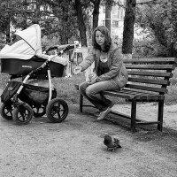 ...свежий мякиш сизым голубям. :: Вадим Sidorov-Kassil