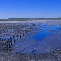 Грязевое озеро Чокрак :: Наталья Савченко
