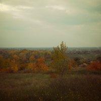 осень в деревне :: Елена Ищенко