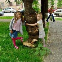 У дерева с грибами :: Нина Корешкова