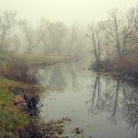 Утром на речке :: Николай Алехин