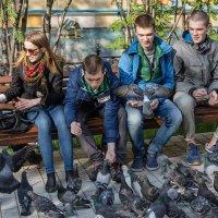 голуби :: Наталья Василькова