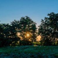 Первые лучи Солнца :: Андрей Воробьев