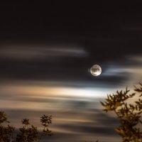 Луна :: Владимир Салапонов