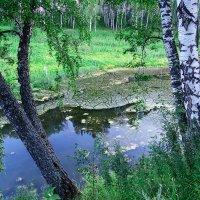 Озерцо :: Николай Мелонов