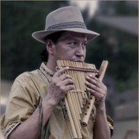 Экзотический музыкант2из Боливии :: Shmual Hava Retro