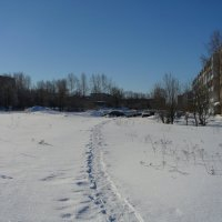 МОЯ ДЕРЕВНЯ. :: Виктор Осипчук