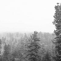 в горах :: Ирэн