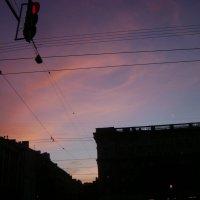 Петербург. Белая ночь :: Марина Домосилецкая