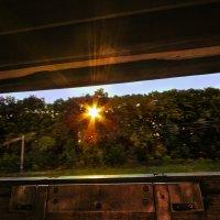 Из окна поезда :: Anna Falcon