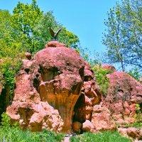 Красные камни. :: Виктор Заморков