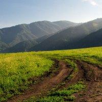 Дорога в горы :: Лариса Сливина