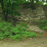 Остатки  крепостной  стены  в  Галиче :: Андрей  Васильевич Коляскин