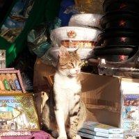 Продавец сувенирной лавки :: Инга Егорцева
