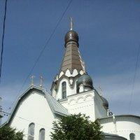 Церковь святителя Петра в Петербурге. :: Светлана Калмыкова