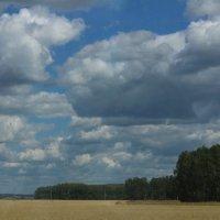 Алтайский край, наше самое любимое место. :: Nadezhda Ulitina