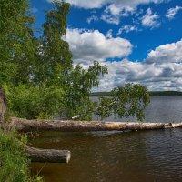 Озеро наступает :: vladimir