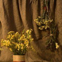 Душистые травы середины лета :: Аннушка Козельская