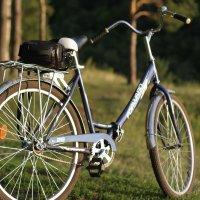 Велопрогулка :: Наталья Барышева