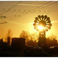Солнце :: Олег Назаров